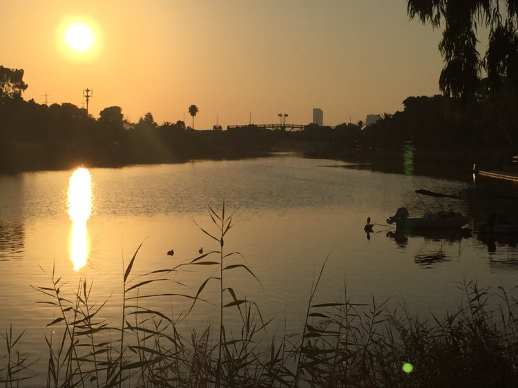 Sun rising over the Yarkon River, Colouring it in gold