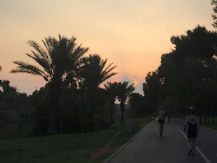 Sun rising behind palm trees and a running paths.