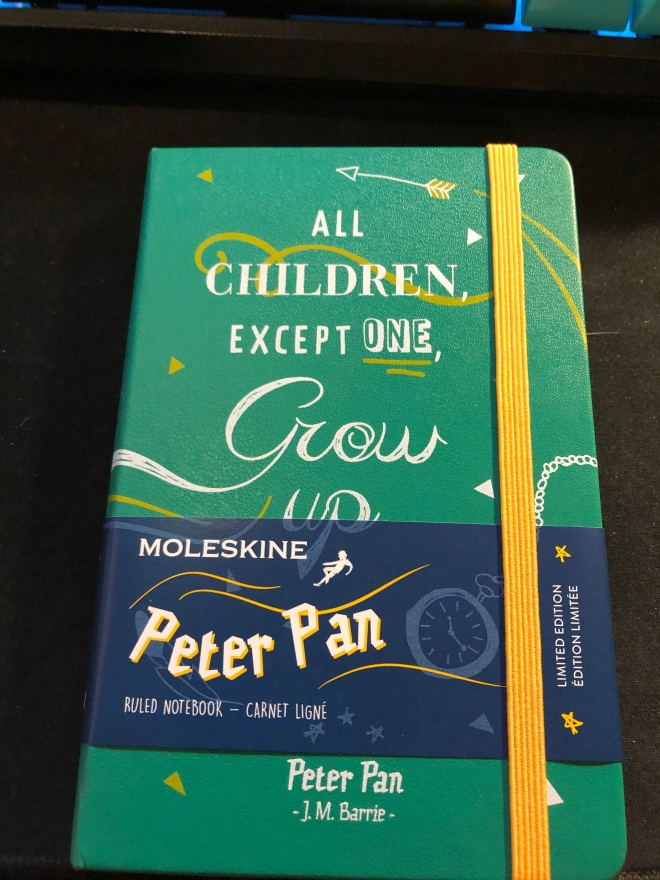 Triggers Daily Questions And A Moleskine Pocket Peter Pan Limited
