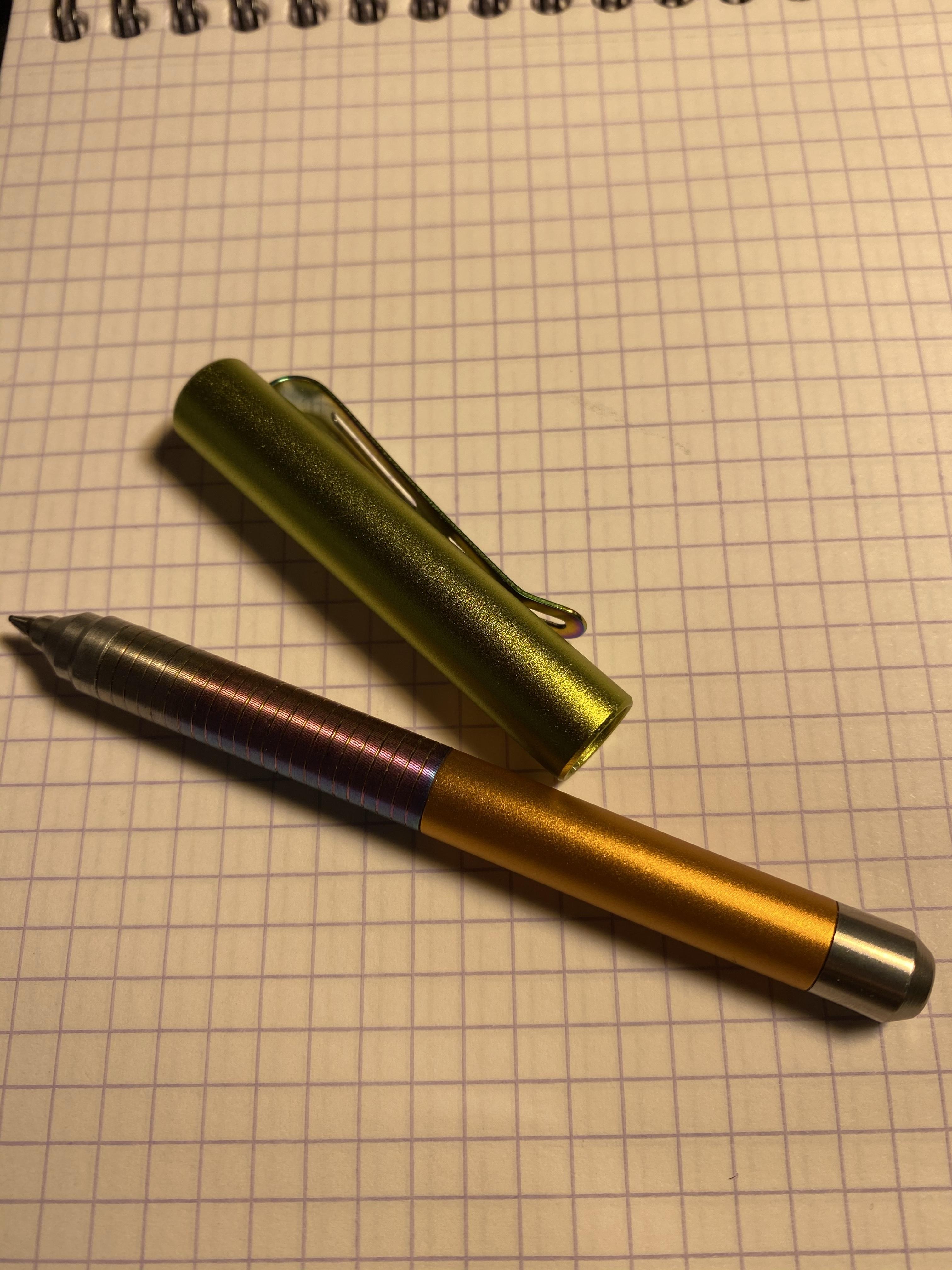 img 6237 - Spoke Roady Gecko Pen Assessment